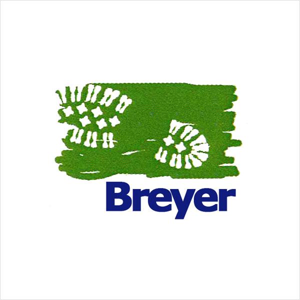 Schuhmacherei Breyer